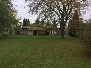 Beautiful Family Home for Rent! London Ontario image 2