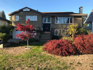 $4500 / 4br - 2207ft2 - a great house for rent in North Van