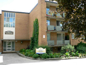 205 Brandon Av Kitchener ONE bedroom available April/1