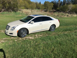 Cadillac Platinum XTS AWD for sale  REDUCED PRICE