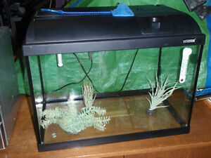 Aquarium de 20 gallons