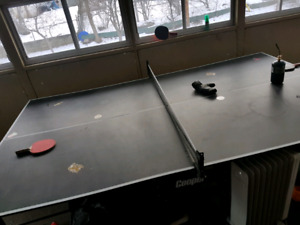 Ping pong table - full size