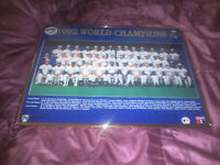 Toronto Blue Jays 1992 World Series Poster Framed Glass