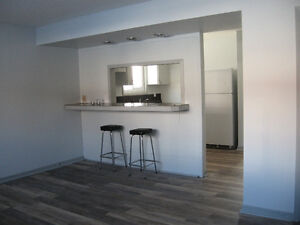 Great 1 Bedroom Apartment in Triplex - Available Now