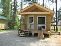 Cabin for Rent On Manitou Lake. River Valley,on