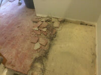 WE TAKE ON ALL FLOOR REMOVAL PROJECTS!  289.456.4083