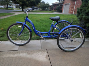 Adult Trike by Schwinn with large carrier basket. Used once.