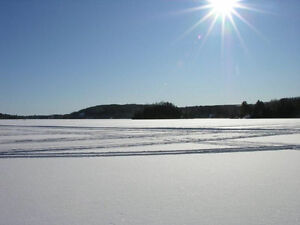 Cottage for rent  - March Break on Viceroy lake
