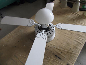 Ceiling fan w/light