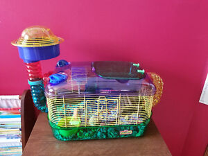 Hamster with brand new cage
