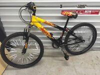 "Boys Raleigh mountain bike 20"""