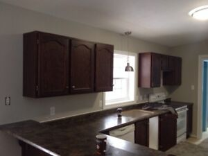 Kitchen cabinets (PENDING)