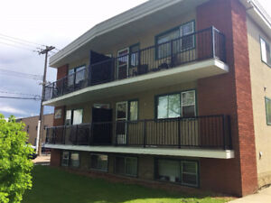 Beautifully Renovated Upgraded 1 Bedroom in Old Strathcona