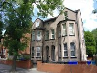 1 Bedroom Newly Refurbished flat 7 min from Centre