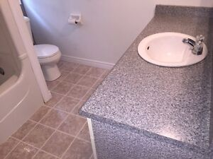 Leave The Move In & Out Cleaning To Me ! FREE QUOTES Stratford Kitchener Area image 1