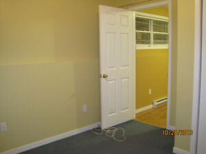 Bright 1 Bedroom in Paradise St. John's Newfoundland image 6