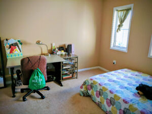 Cozy Room Sublease from May-Aug(Females only)
