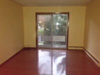 Kitchener - Large 1 Bedroom - $770 + Hydro - Available Nov 1st