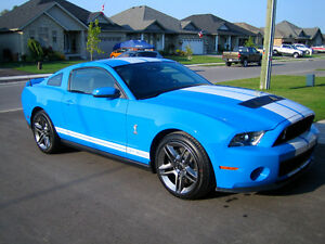 2010 Ford Mustang Shelby GT500 Coupe (2 door)