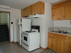 Large One Bedroom Apartment in Amherst