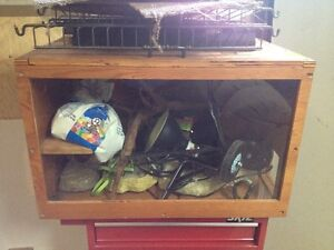 Iguana Cage and Accessories
