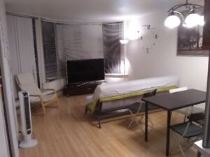 $1680 / 1br - 500ft2 - 1 Bedroom Apartment DOWNTOWN for Rent
