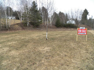 Vacant Lot for Sale Just Outside of Perth-Andover Town Limits