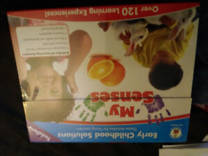 My senses learning toy