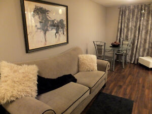 Fully Furnished 1 bdrm suite available Nov 15th