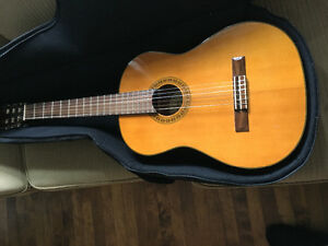 Washburn classical guitar and soft case