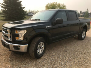 2015 Ford Super Crew F150 XLT only $378/mth!!! trades??