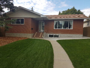 2 Bedroom + Den Basement Suite in Pleasantview