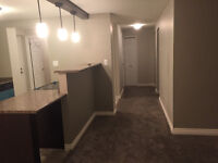 Renting 2 Bedroom Apartment / No rent just deposit for February