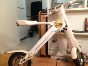 ZOOM ZOOM ZOOM!  36 Volt Lithium Powered Folding E-bike