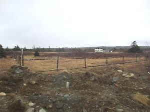 Cabin Country - Second Pond Rd - Bay Roberts - MLS 1132824 St. John's Newfoundland image 3