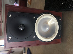 Paradigm Atom monitor V6 speakers