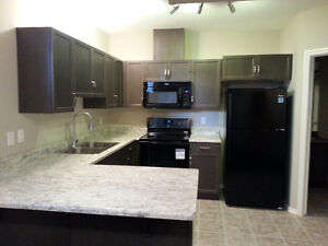 BRAND NEW Fully Furnished Legal Basement Suite in West Haven Led