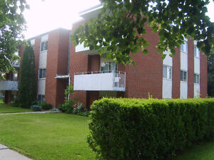 137 Lorraine Ave., Kitchener - 1 Bed. Apartment. - Stanley Park