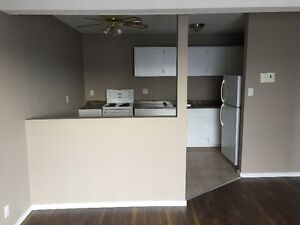 Newly renovated apartment! 2 months rent free!!