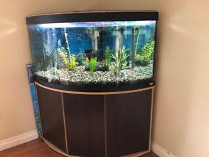 Corner Fish Tank With Base