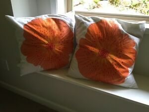 Crate and Barrel Feather Pillows