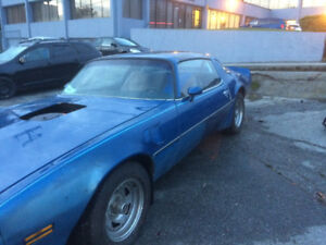 1981 Trans Am FOR SALE
