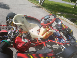 Birel AM29 for sale - Sold pending payment