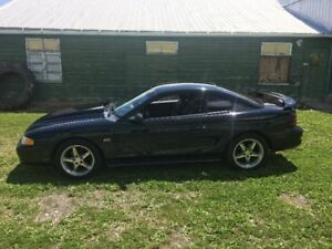 1995 Mustang GT 5spd Supercharged 428Hp Trade for Ford 4x4 Diese