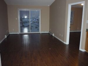 2 Bedrooms, 2 F/Baths Condo Apt in SE Edm