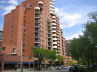 Gorgeous Furnished Two Bedroom Condo For Rent In Downtown