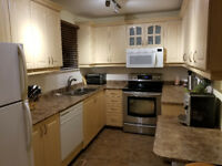 3 Bdr house for rent - prime location!