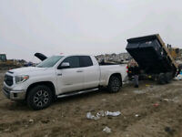 FALL CLEAN UP/./JUNK REMOVAL/TREE REMOVAL 226-973-9002