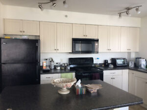 Fully Furnished 2 bed and 2 bath apartment for rent
