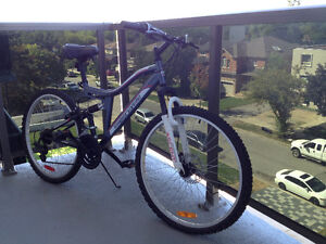All Terrain Bicycle